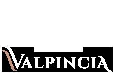 La Luz del Duero – Valpincia Logo